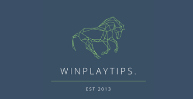 WinPlayTips Review