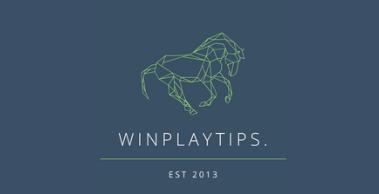 WinPlayTips Review
